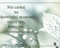 slow_life_minimalizm-1