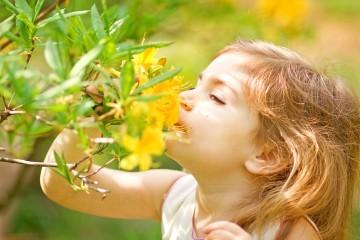Dziecko wąchające kwiatek
