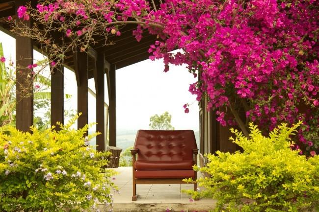 Fotel na werandzie