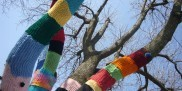 Yarn bombing - ubrane drzewo