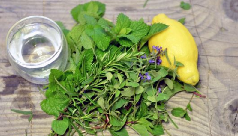 zioła i cytryna