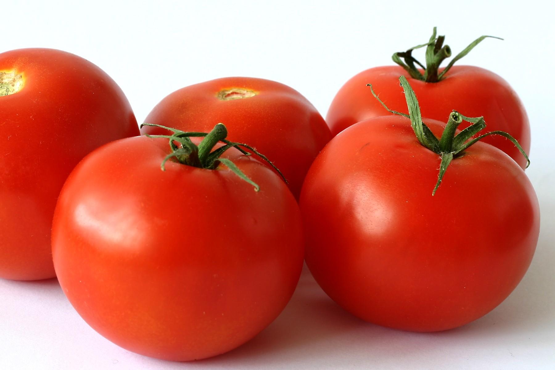 Szejk pomidorowy