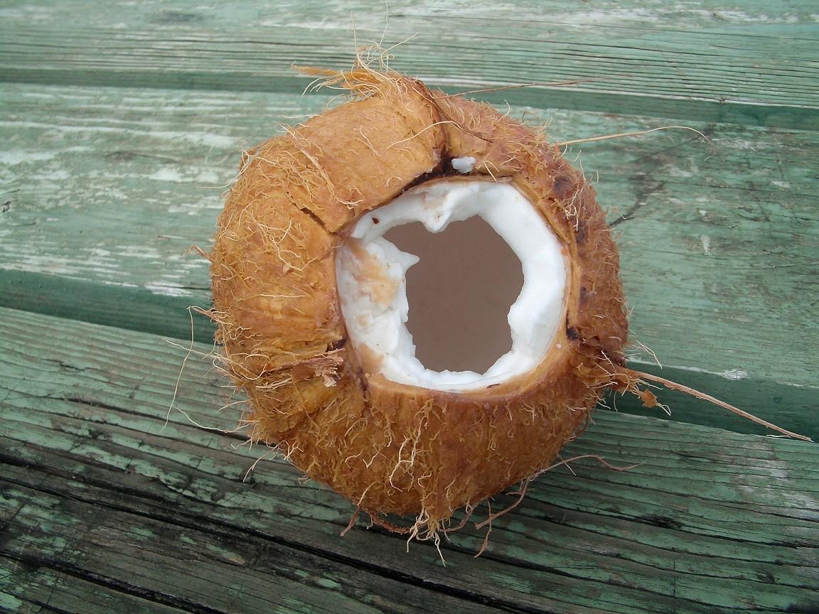 Kokos - mleko kokosowe