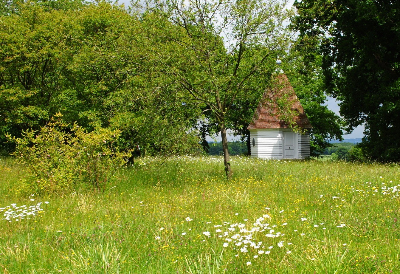 Ogród angielski