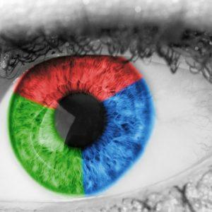 widzenie kolorów