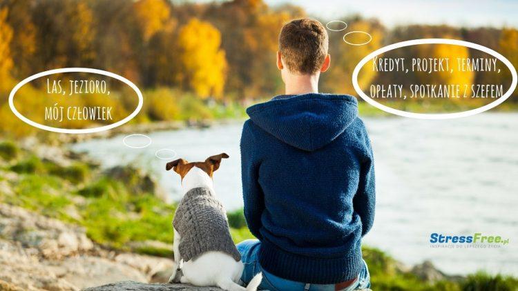 pies i człowiek priorytety