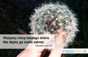 cytaty_inspiracje_stressfree-5